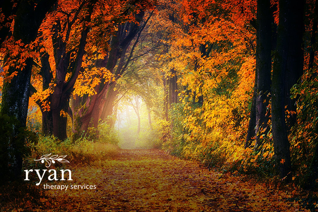 Autumnal Blessings – Serpent Wisdom and Transformation – Ryan Couples Therapy Tacoma, WA